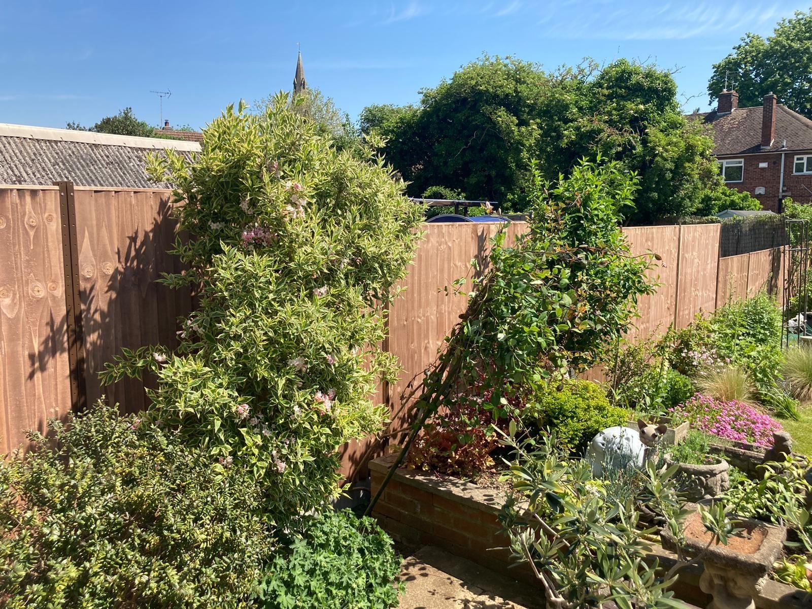 Durapost fencing with concrete gravel boards (Peterborough) 3